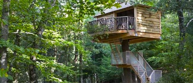 Glamping en espa a el lujo de ir de camping on gold - Casa arbol zeanuri ...